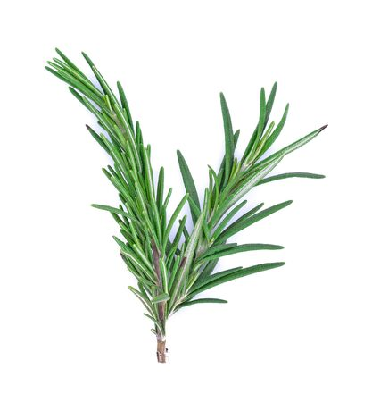 Photo for Rosemary isolated on white background, Top view.  - Royalty Free Image