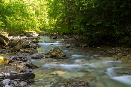 Photo pour Fast mountain river flow among green forest. Beautiful nature of Carpathians. Ukraine. Europe. Summer mountain landscape. - image libre de droit