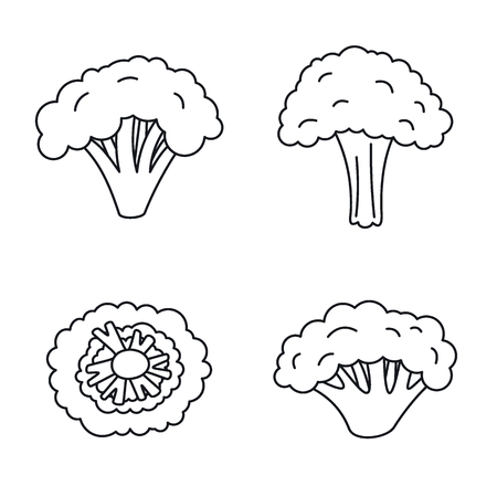 broccoli plant icon set outline style royalty free vector graphics clipdealer