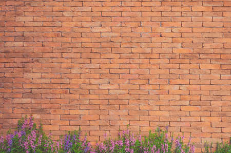 Photo for Flowers on Brick Wall Texture - Royalty Free Image