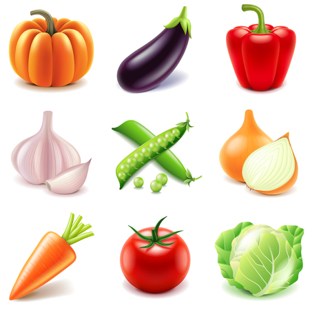 Vegetables icons detailed photo realistic vector setのイラスト素材