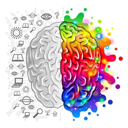 Ilustración de Human brain concept logic and creative vector photo-realistic illustration - Imagen libre de derechos