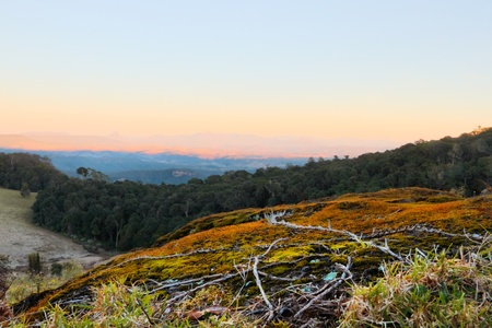 views of the border ranges on duck road lamington national park overlooking farmland