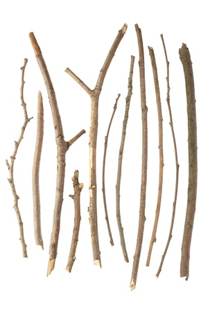 Sticks and twigs isolated on white
