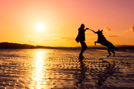 Photo pour Hipster girl playing with dog at a beach during sunset, silhouettes with vibrant colors - image libre de droit