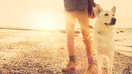 Photo pour Hipster girl playing with dog at a beach during sunset, strong lens flare effect - image libre de droit