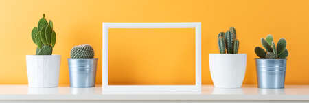 Photo for Collection of various cactus plants in different pots. Potted cactus house plants on white shelf against pastel mustard colored wall and picture frame mock up banner. - Royalty Free Image
