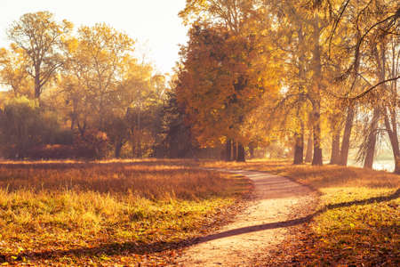 Foto de Footpath in a beautiful colorful autumn park. - Imagen libre de derechos
