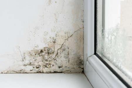 Photo pour Mold in the corner of the plastic windows. - image libre de droit