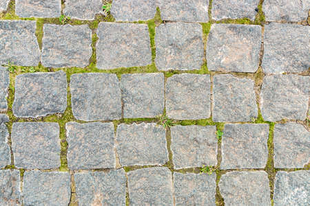 Photo for grey stone background from old square paver bricks and green grass between them for designs. - Royalty Free Image