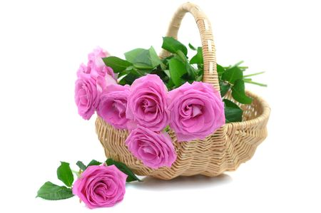 Pink roses in a wicker basket, isolated on white