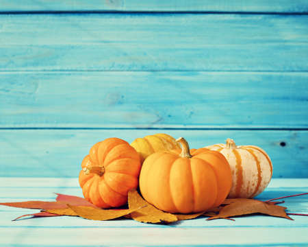Pumpkins and autumn leafs over turquoise wood