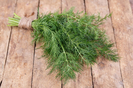 fresh green dill on a wooden background