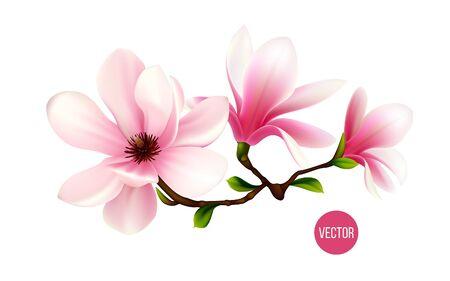 Illustration pour Set of blooming magnolia. 3d realistic vector icon - image libre de droit