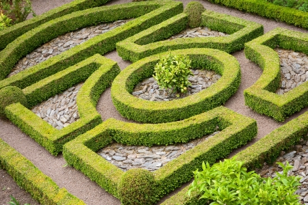 Traditional English box hedge knot garden with pebbles.