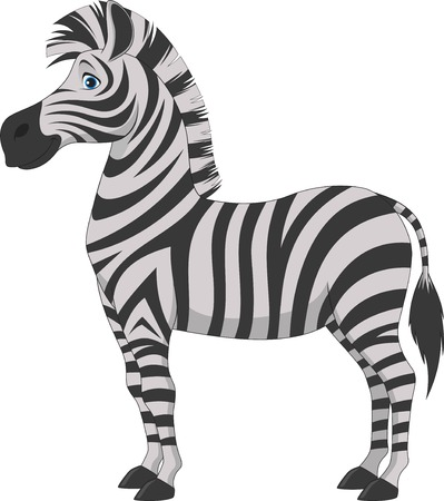 Vector illustration, fun zebra on a white backgroundのイラスト素材