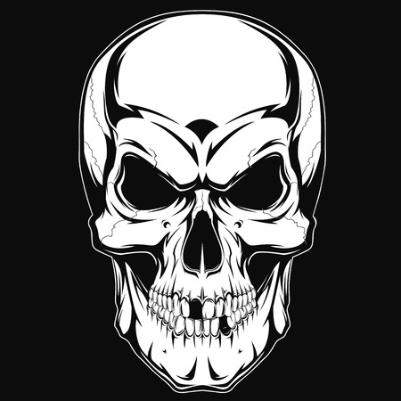 Black and white human skull with a lower jaw.