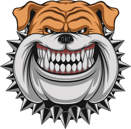 Vector illustration Angry bulldog mascot head, on a white background