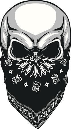 Vector illustration, skull bandana on a white background