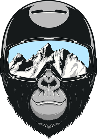 Illustration for Vector illustration of a gorilla in a helmet for snowboarding - Royalty Free Image