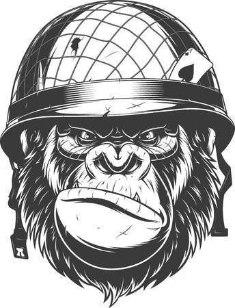 Illustration pour Vector illustration, fierce gorilla wearing military helmet, soldier of fortune, on white background - image libre de droit