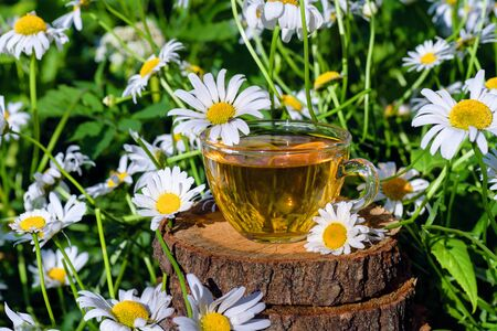 Photo pour A cup of tea standing on a wooden surface, in the colors of a white daisy, in the rays of warm sunlight. - image libre de droit