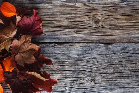 Photo pour Fall leaves on rustic wooden background - image libre de droit