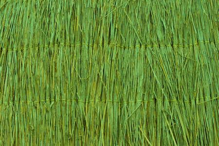 Green reed texture wallpaper