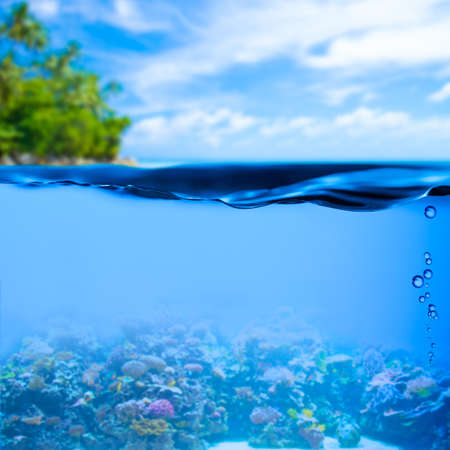 underwater tropical sea with water surface background