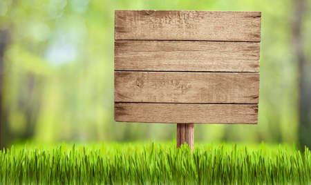 wooden sign in summer forest, park or garden