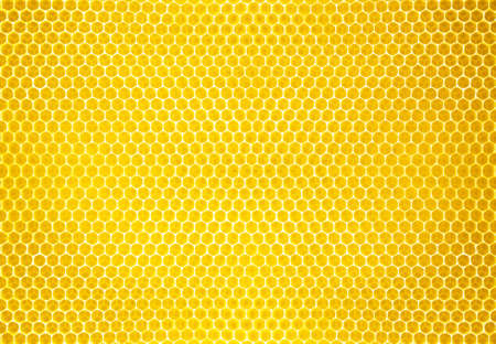 honey comb background or texture