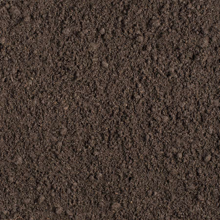 Photo for Wet soil seamless square texture - Royalty Free Image