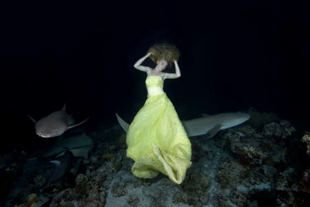 Night dance with sharks. Young beautiful woman in yellow dress dancing underwater with Tawny Nurse Sharks (Nebrius ferrugineus), night shooting in Indian Ocean on Maldives