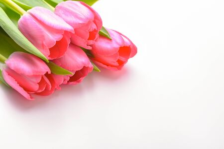 Photo for Bouquet of fresh pink tulips on a white background, isolated - Royalty Free Image