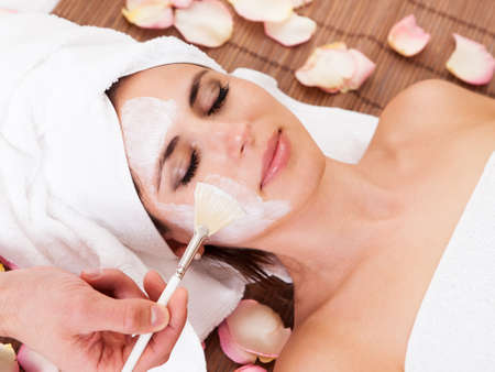 Photo pour Beautiful young woman getting facial mask at spa studio - image libre de droit