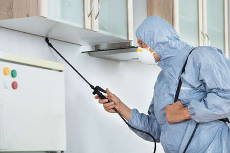 Photo for Side view of exterminator in workwear spraying pesticide in kitchen. Pest control - Royalty Free Image