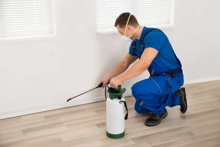 Photo pour Side view of male worker spraying pesticide on wall at home - image libre de droit