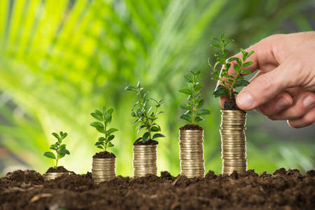 Photo pour Close-up Of Person Hand Holding Small Plant On Stacked Coins - image libre de droit