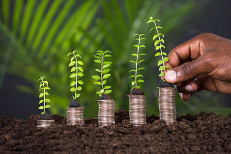Photo pour Person's Hand Holding Small Plant On Stacked Coins - image libre de droit