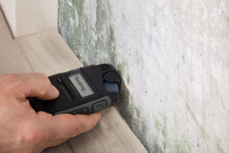 Foto de Person Hand Measuring The Wetness Off A Moldy Wall - Imagen libre de derechos