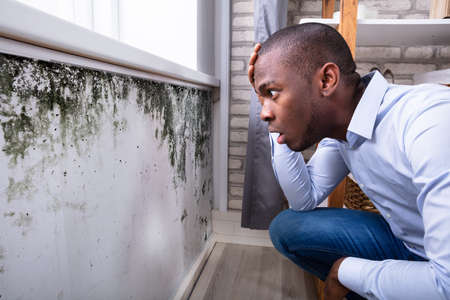 Photo pour Side View Of A Shocked Young African Man Looking At Mold On Wall - image libre de droit