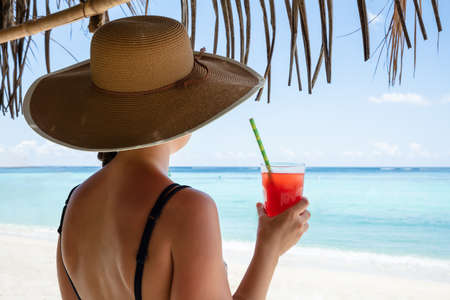 Photo pour Rear View Of Woman Wearing Hat Holding Glass Of Juice In Hand Looking At Sea - image libre de droit