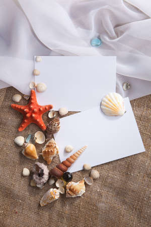 Memories of holidays by the sea  Background with blank cards and shells