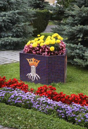 Andreyshevchenko150900215