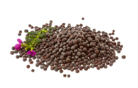 Black mustard seeds isolated on white