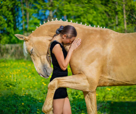 Photo for Girl hugging a horse - Royalty Free Image
