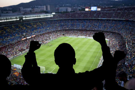 Happy soccer fans in the stadium