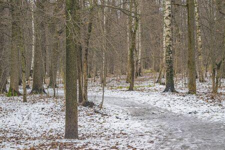 Photo pour Autumn landscape of Central Russia. The first snow in the Park. Park path covered with snow - image libre de droit