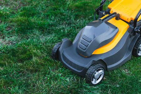 Photo for Electric lawn mower on a lawn at the garden. gardening concept - Royalty Free Image