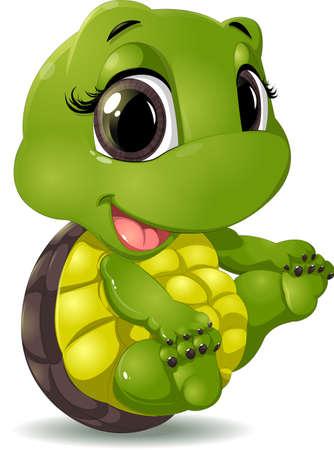 Foto de little turtle that sits on a white background - Imagen libre de derechos